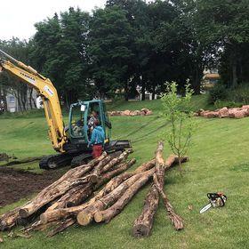 Der Bagger ist schon angerückt und Naturspur hat mit den vorbereitenden Maßnahmen begonnen. Ab nächster Woche soll das Projekt nun mit Hilfe vieler Freiwilliger Form annehmen.