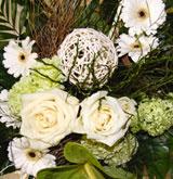 Ruhe- und Besuchszeiten / Blumen